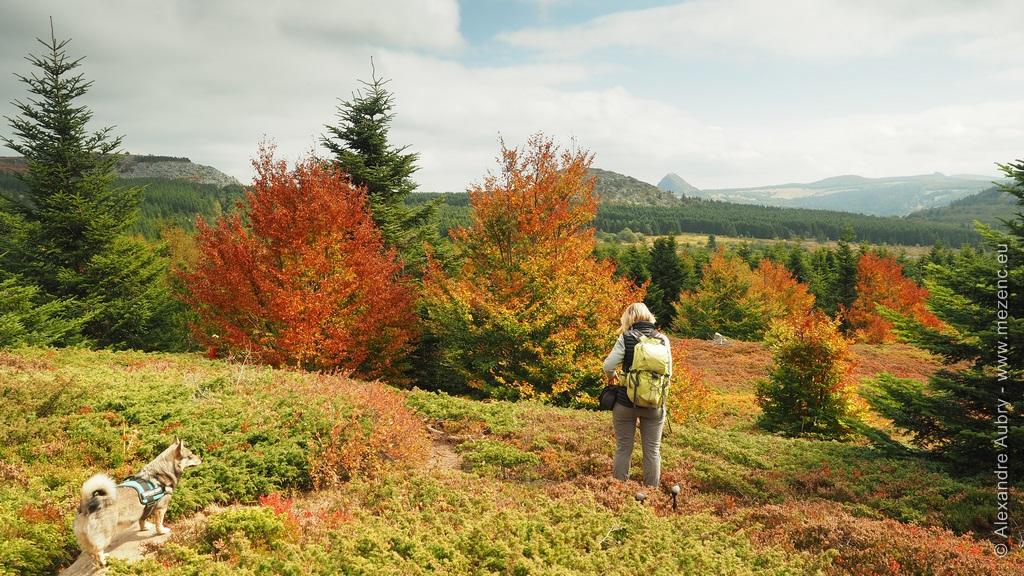 Randonnée sur le plateau ardéchois au Suc de Montfol