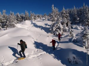 Raquette à neige au Rechausseyre - Les Estables