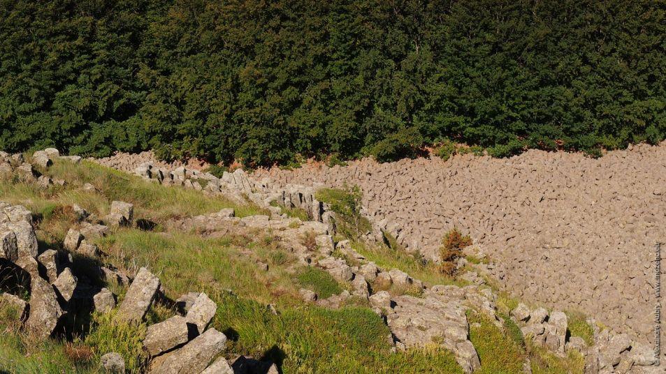 Chaos d'orgues basaltiques au Rocher du Cheylard